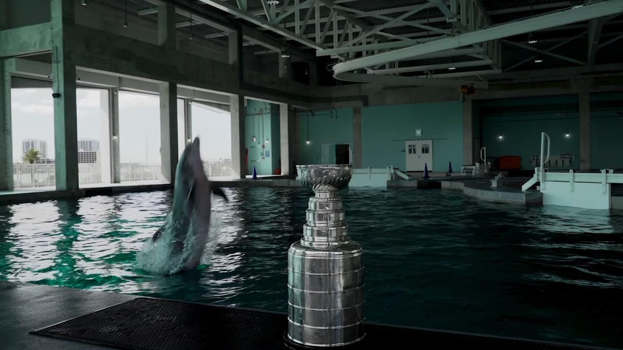 Stanley Cup visits Winter the Dolphin in Florida