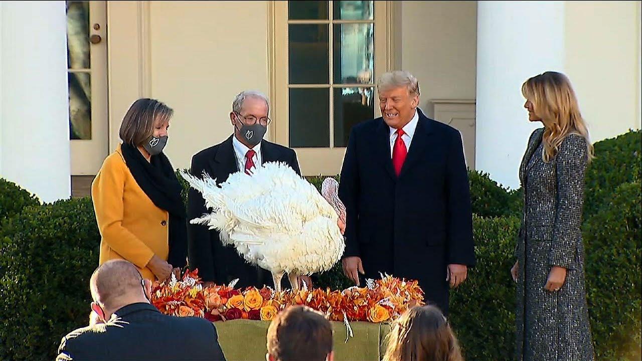 Trump pardons Thanksgiving turkeys at White House