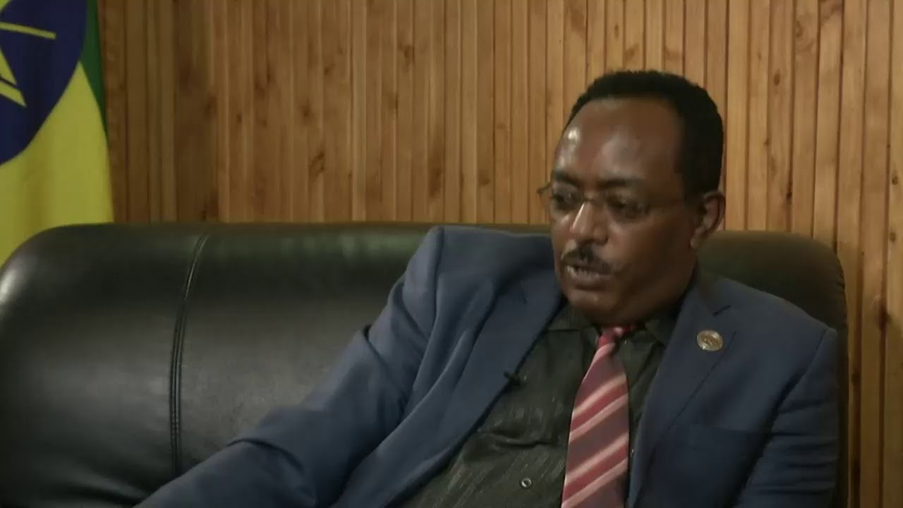 LIVE: Ethiopian government spokesman speaks to Reuters