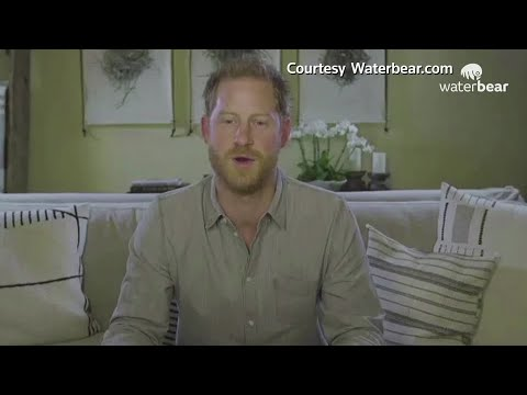 COVID-19 a rebuke from nature, Prince Harry says