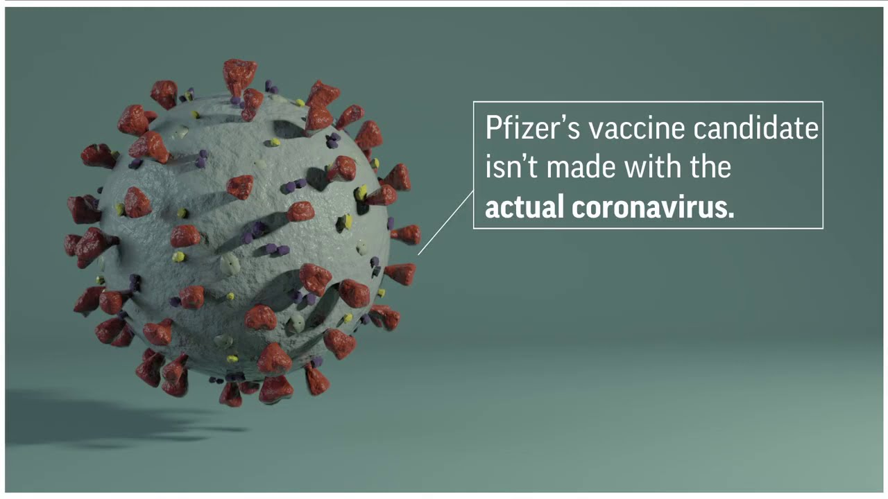 Pfizer vaccine explained