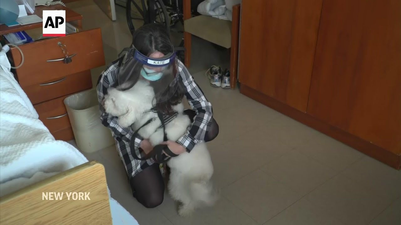 Dogs provide love at nursing home during pandemic