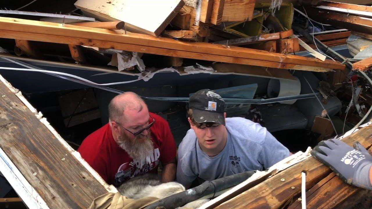 Dog rescued from tornado-damaged home in Alabama