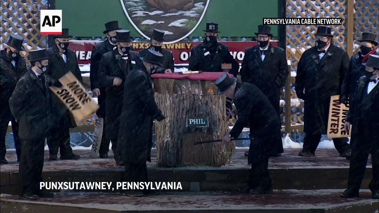 Groundhog Day: Punxsutawney Phil says more winter