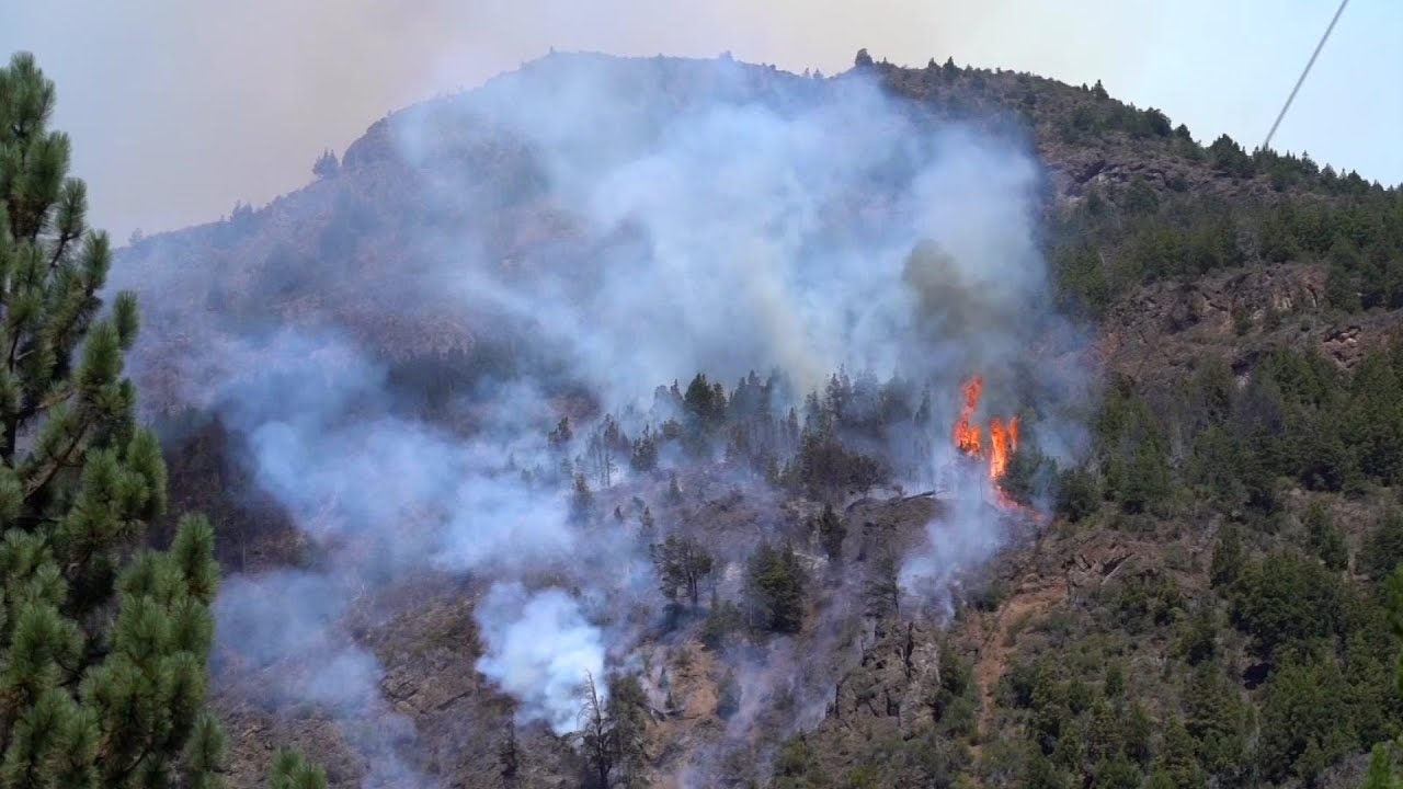 Firefighters battle Patagonia forest fire