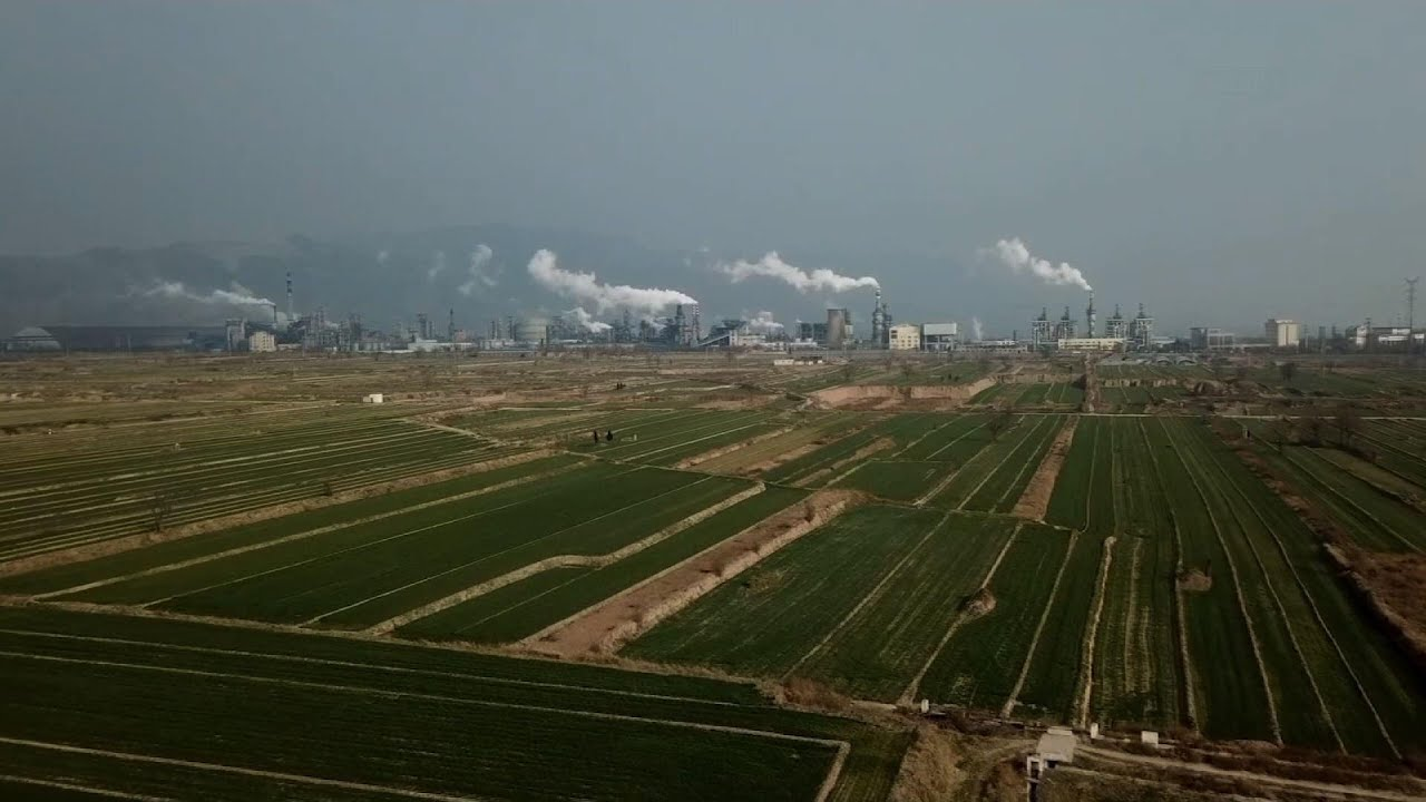 UN: Huge changes in society needed to help Earth